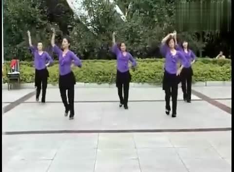 广场舞甩葱歌分解动作-免费在线观看-360影视