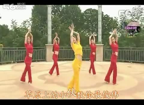 丽萍广场舞--敖包再相会--配歌词字幕