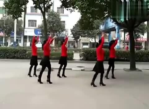 [舞蹈]兰兰广场舞水中月亮[高清]