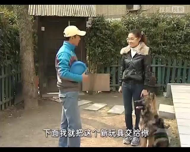 女狗奴怎么训练_电视剧 6 相爱十年 电视剧  训练狗狗大小便  女狗奴 怎么训练 怎么训